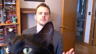 Cat Owner Interrupted During BBC Interview by : Cole and Marmalade