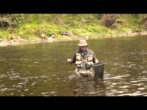 Dry fly fishing with silk fly lines