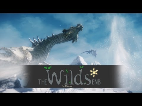 Skyrim ENB Presets - TES V - Skyrim The Wilds ENB