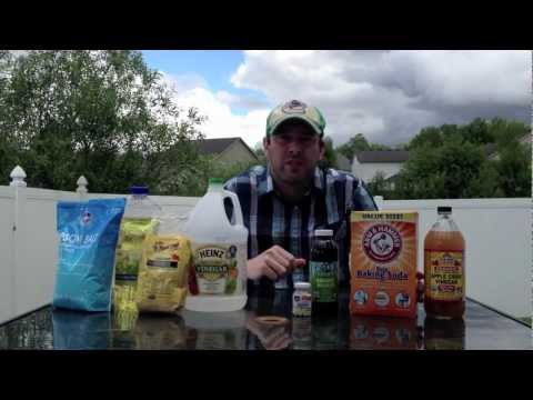 DIY natural fertilizers, insecticides, herbicides and fungicides with house hold items