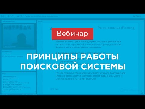 Вебинар: «Принципы работы поисковой системы», (Netpeak)