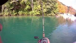 Savage Gear 3D trout swimbait 27,5cm casting