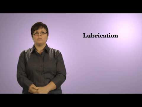 Sexual Assault Nurse Examination Vocabulary in ASL thumbnail