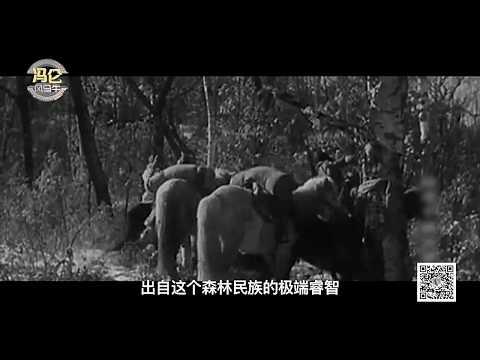 中國最後的獵人 - 鄂倫春族