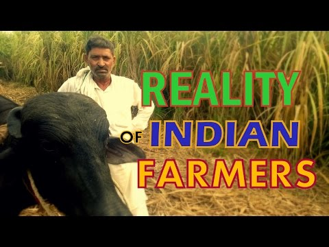 Reality Of Indian Farmers | Must Watch |