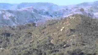 Rus helikopterleri düşen uçağın pilotlarını arıyor