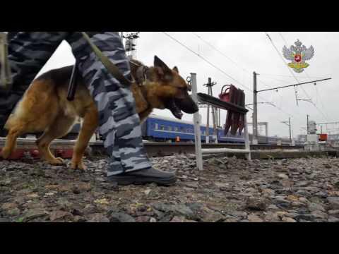 Видеоролик для ФГУП «Охрана железнодорожного транспорта России»