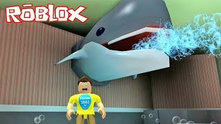 Roblox Escape The Fish Store Obby ! || Roblox Gameplay || Konas2002