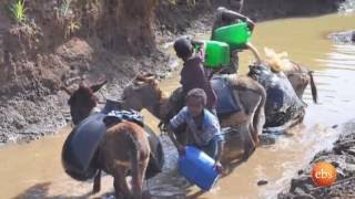 What's New: Cholera Outbreak Threat in Addis