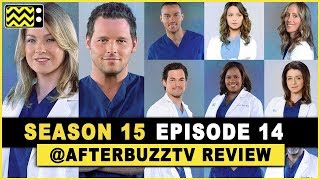 Grey's Anatomy Season 15 Episode 14 Review & After Show