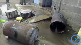 Nakuru police confiscate Kangara and Chang'aa in illicit brew crackdown
