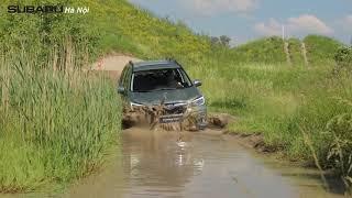 OFF ROAD TEST DRIVE - SUBARU FORESTER E-BOXER | SUBARU HÀ NỘI
