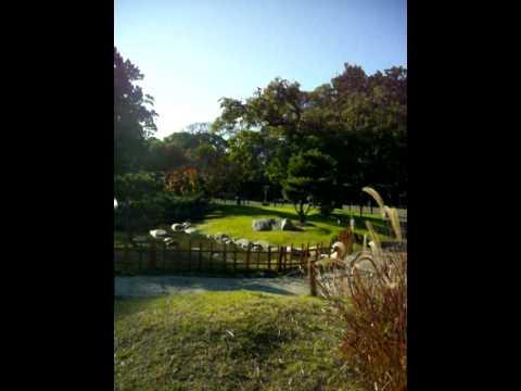 Buenos aires japanese gardens for Amapola jardin de infantes palermo
