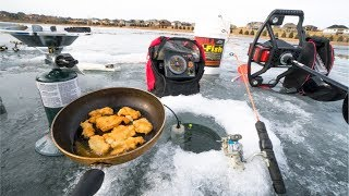 CATCH and COOK while Ice Fishing!!!!!