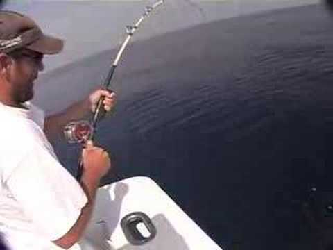 Deep  Fishing Destin on Deep Sea Fishing Destin Florida  Rocks