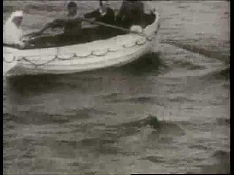Gertrude Ederle Swimming The English Channel Gertrude Ederle – FR...