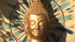 CHRIS SPHEERIS - Narabi - Album Maya