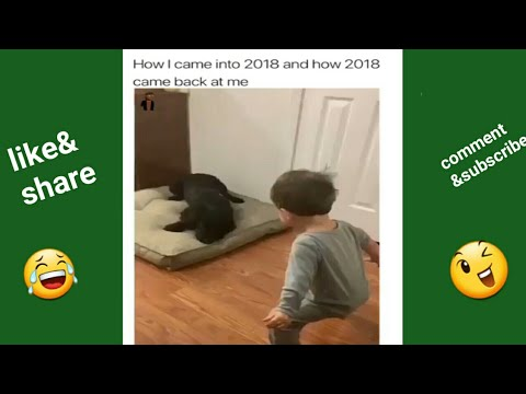 whatsapp funny 2018 videos /bright city (only funny video)