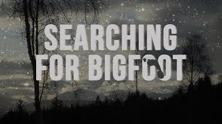 Searching For Bigfoot: A Christmas Message