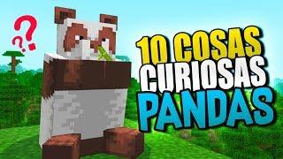 👉 10 COSAS QUE NO SABIAS DE LOS PANDAS 👈 MINECRAFT 1.14