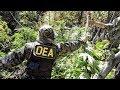 Lagu Tips on Becoming a DEA Agent