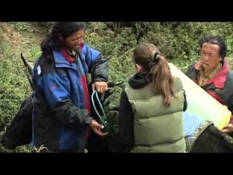 Тайные экспедиции SS в Тибет