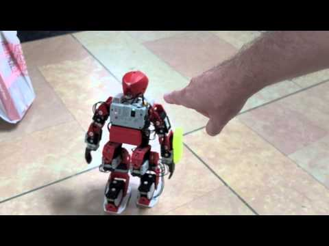 3d Printed Humanoid Robot Walking Around