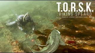 Pesca submarina/Spearfishing. Viking Spearo: T.O.R.S.K.