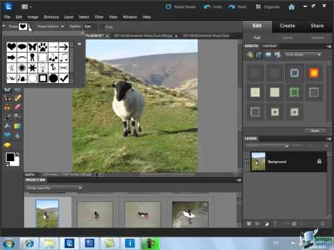 How to Crop Photos Using Photoshop Elements 10