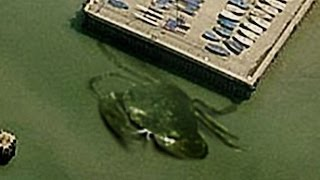 19 BIZARRE Things Found on Google Earth