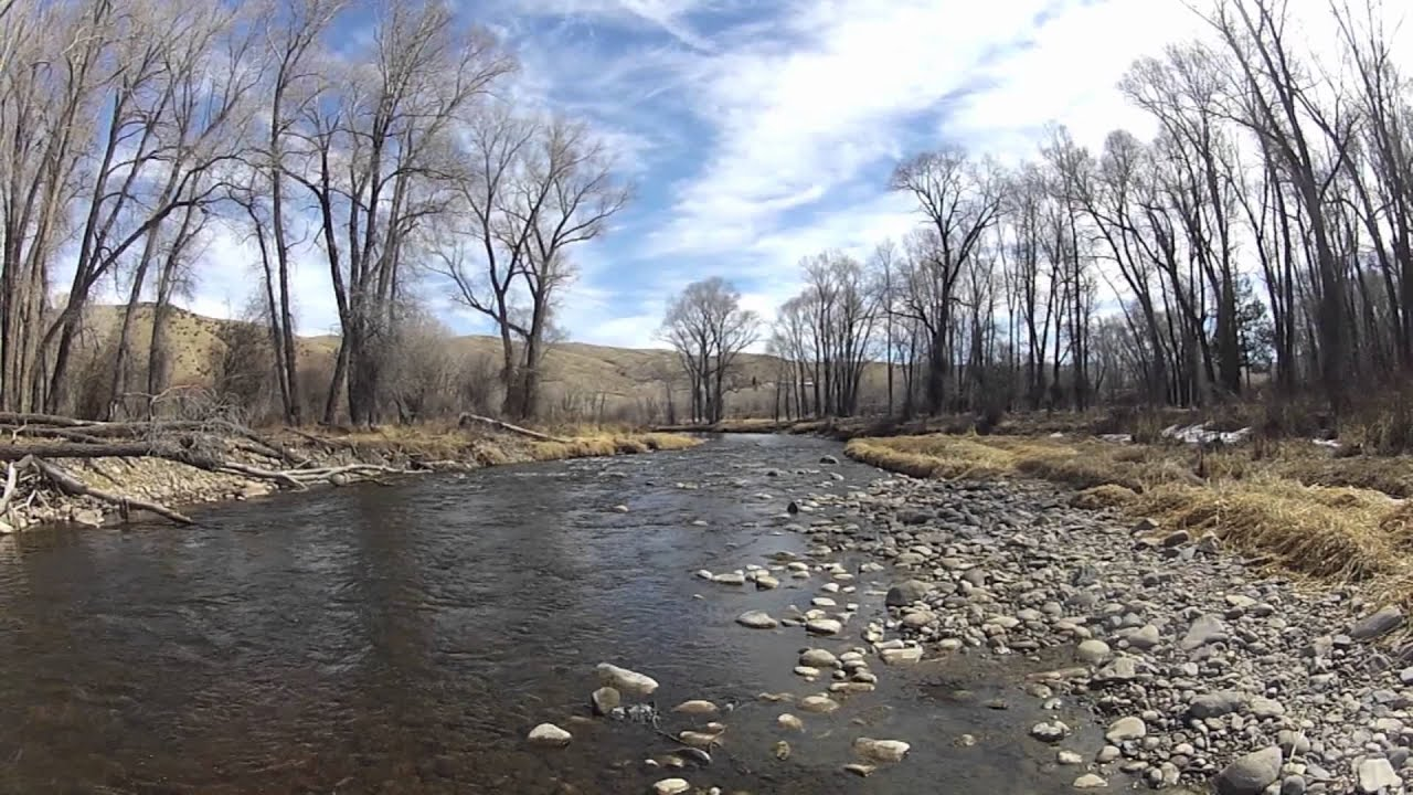 Fly fishing williams fork tailwater river info youtube for Williams fork fishing report