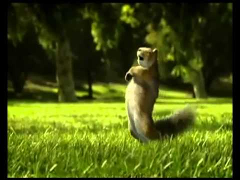 Nestle KIT KAT squirrel Ad Aug 2010 Break Banta Hai