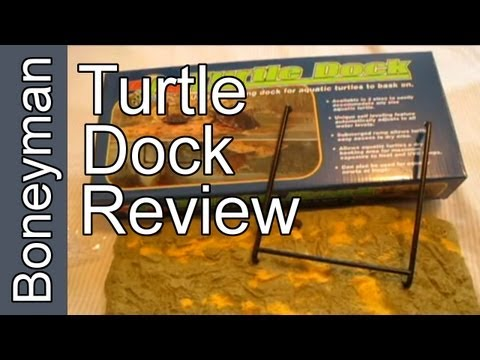 Zoo-Med Turtle Dock Review: Your Results May Vary