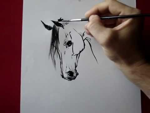 How i draw a horse head   by TORA Music Videos