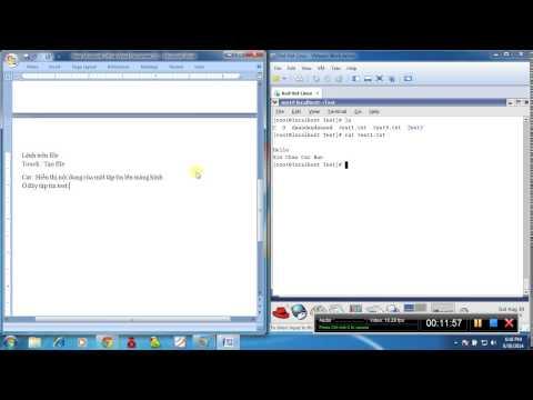 Các Lệnh Cơ Bản Nhất trong hệ điều hành linux |