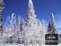 DT8 Project de Winter (Full [video]