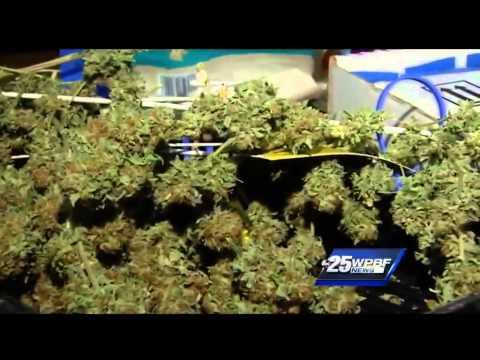Medical marijuana inches way to legalization in Florida