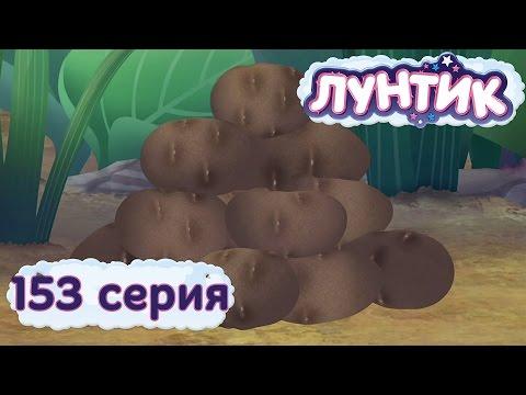 Лунтик и его друзья - 153 серия. Картошка
