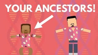 How Different Are You From Ancient Humans?