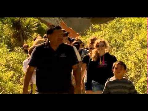 Summer trip: Maori tourism success in Kaikoura