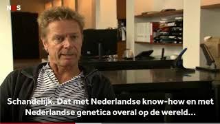 Nederlandse medicinale wiet is rotzooi