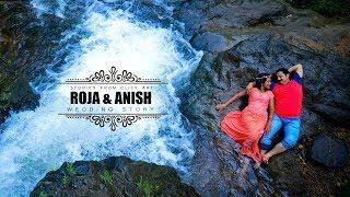 Anish and carol wedding