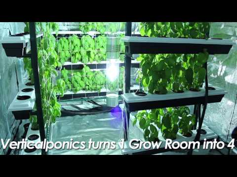 Vertical Grow System Big Buddha Box Indoor Grow Room