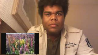 Are you trying to kill me/ Karl Mayer reaction / Weird Youtube Expedition #35