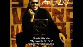 Watch Stevie Wonder My Love Is On Fire video