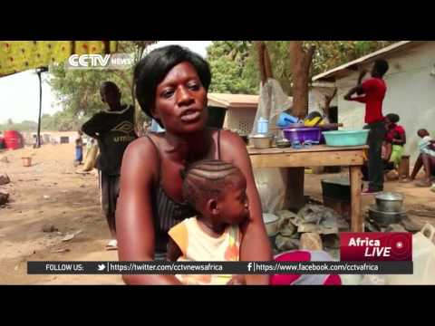 Half Central African Republic's people face hunger