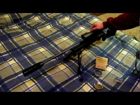 RWS 850 airmagnum co2 air gun w/silencer