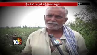 దయనీయంగా పత్తి రైతుల పరిస్థితి..| Cotton Farmers Loss From Cotton Crops | Srikakulam | AP