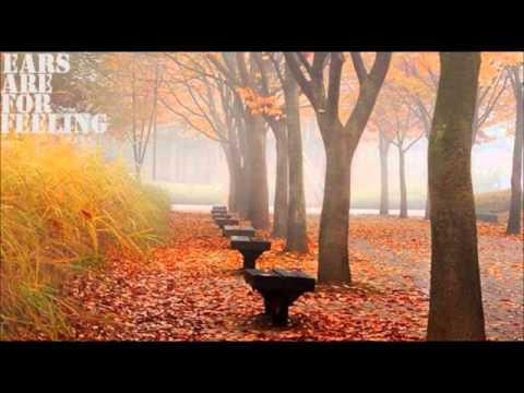 Tyson Motsenbocker - Blink Behind The Leaves