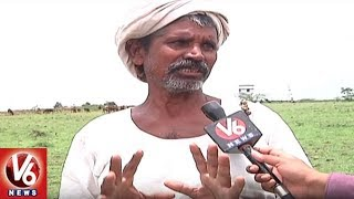 Yadav, Kurma Community People Express Rejoice Over Sheep Distribution Scheme | Sangareddy News